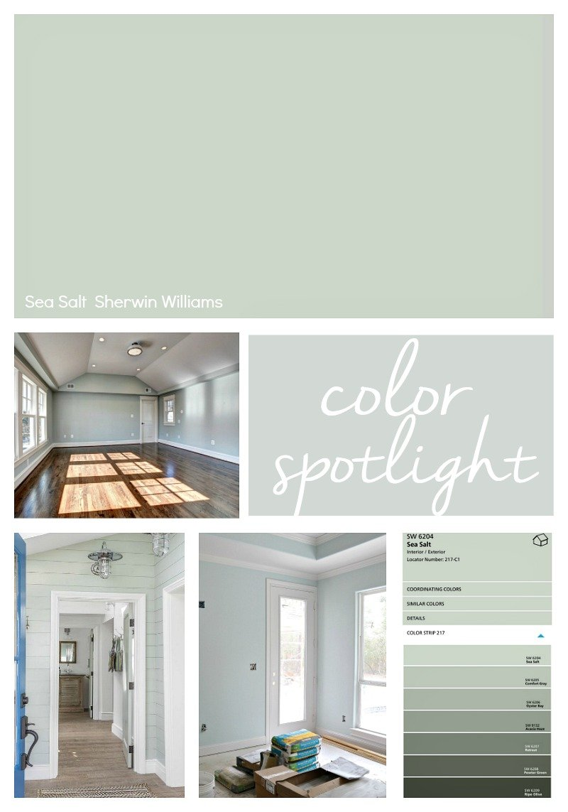 Sherwin Williams Sea Salt. Color Spotlight.