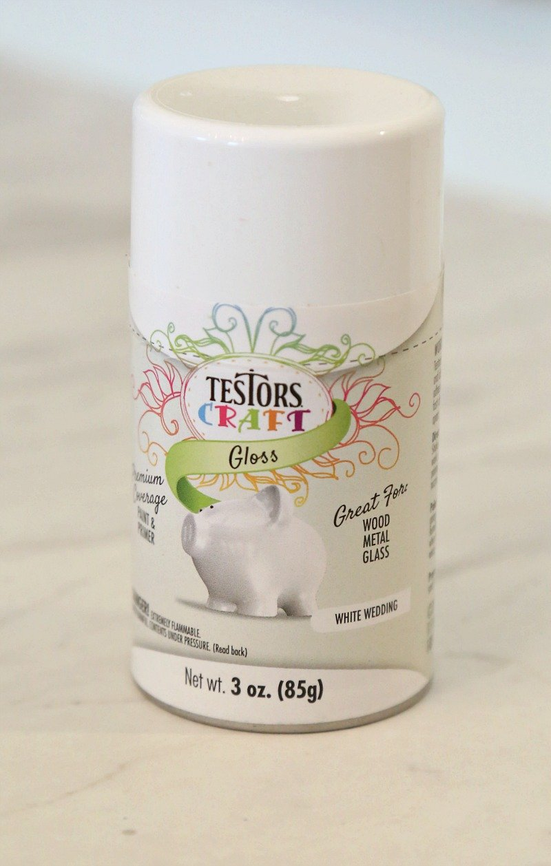 Testors Craft Spray Paint. Works On Glass Metal and Wood.