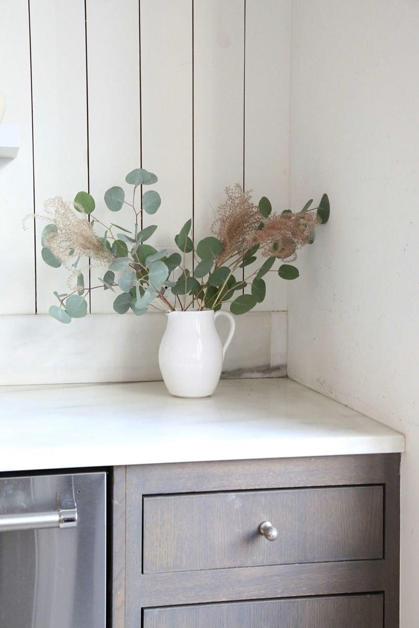 Eucalyptus in Milk Jug on Counter
