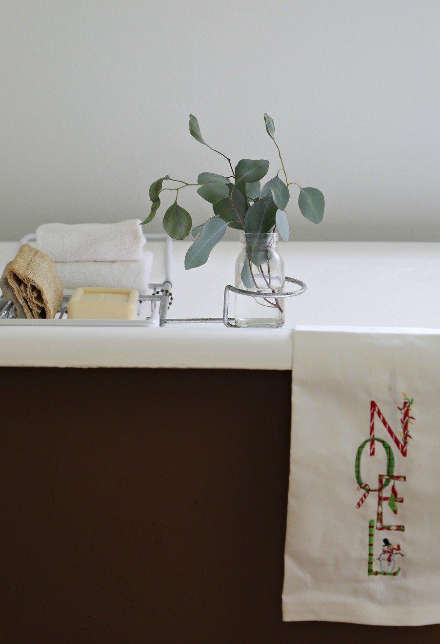 Claw foot bathtub with eucalyptus