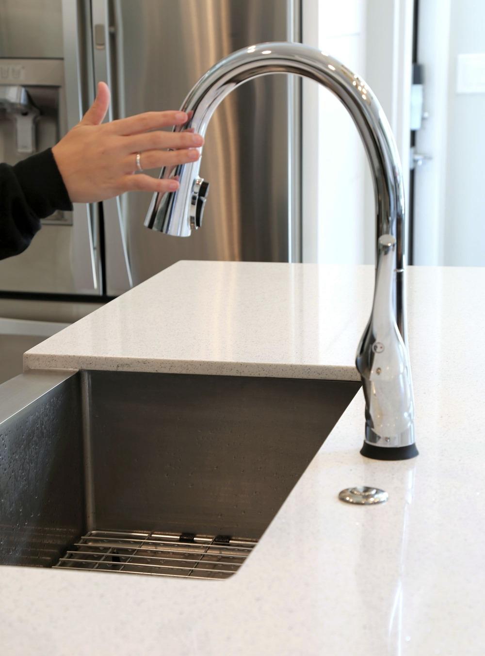 Delta Esque Faucet with ShieldSpray