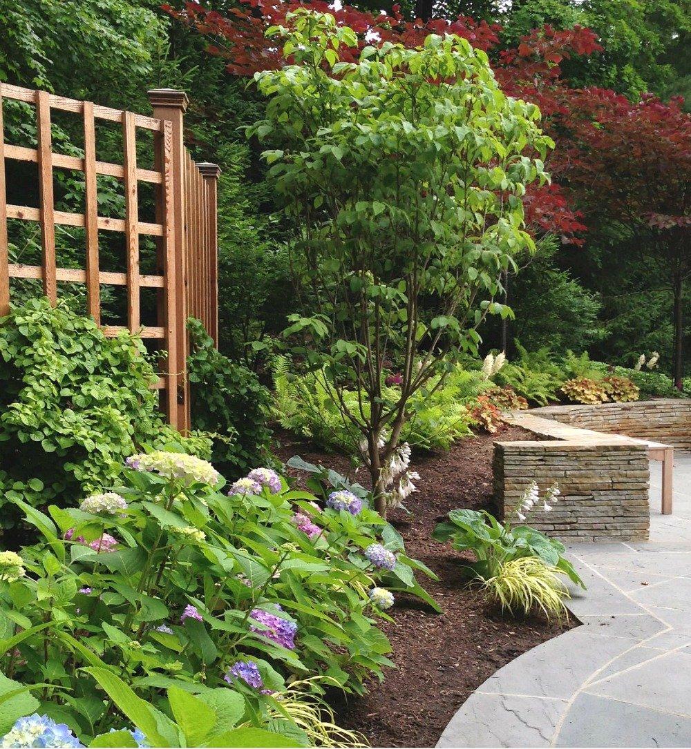 Modern Lattice Fence in Garden