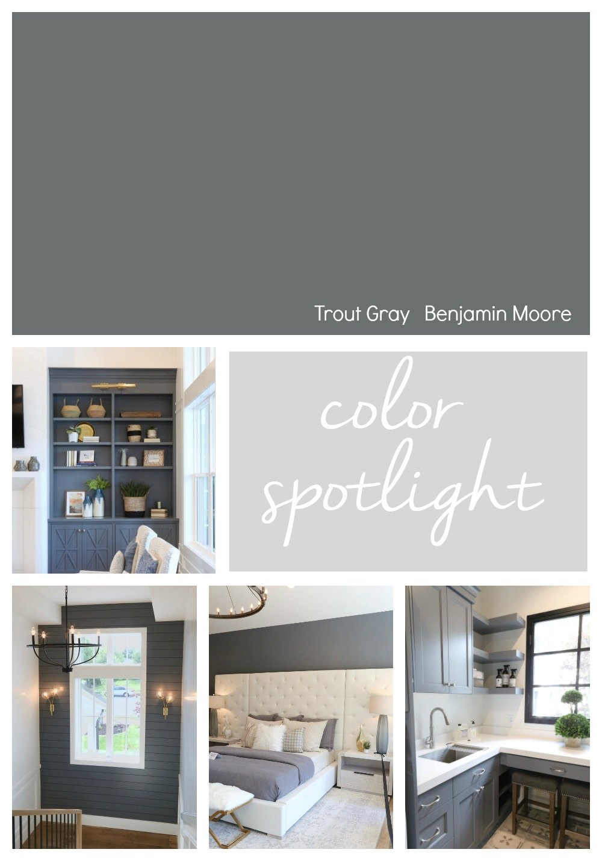 Benjamin Moore Trout Gray Color Spotlight