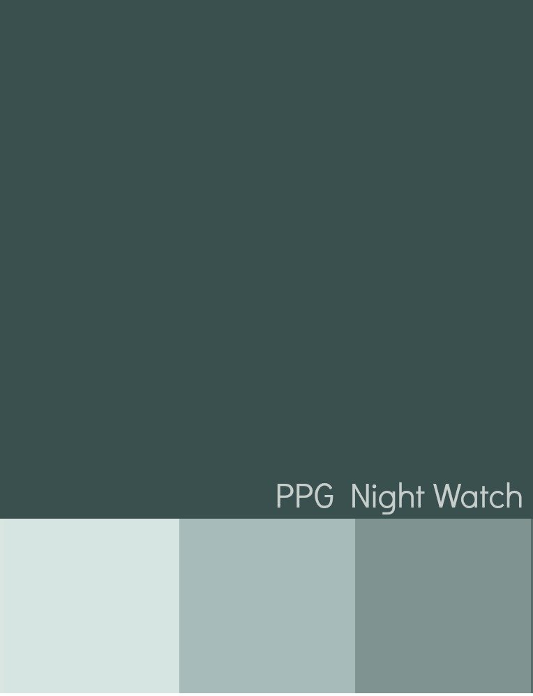 PPG Paints Night Watch