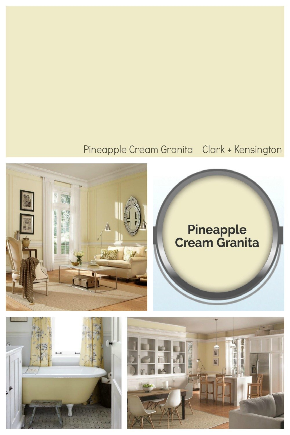 Ace Hardware 2019 Color of the Year. Pineapple Cream Granita