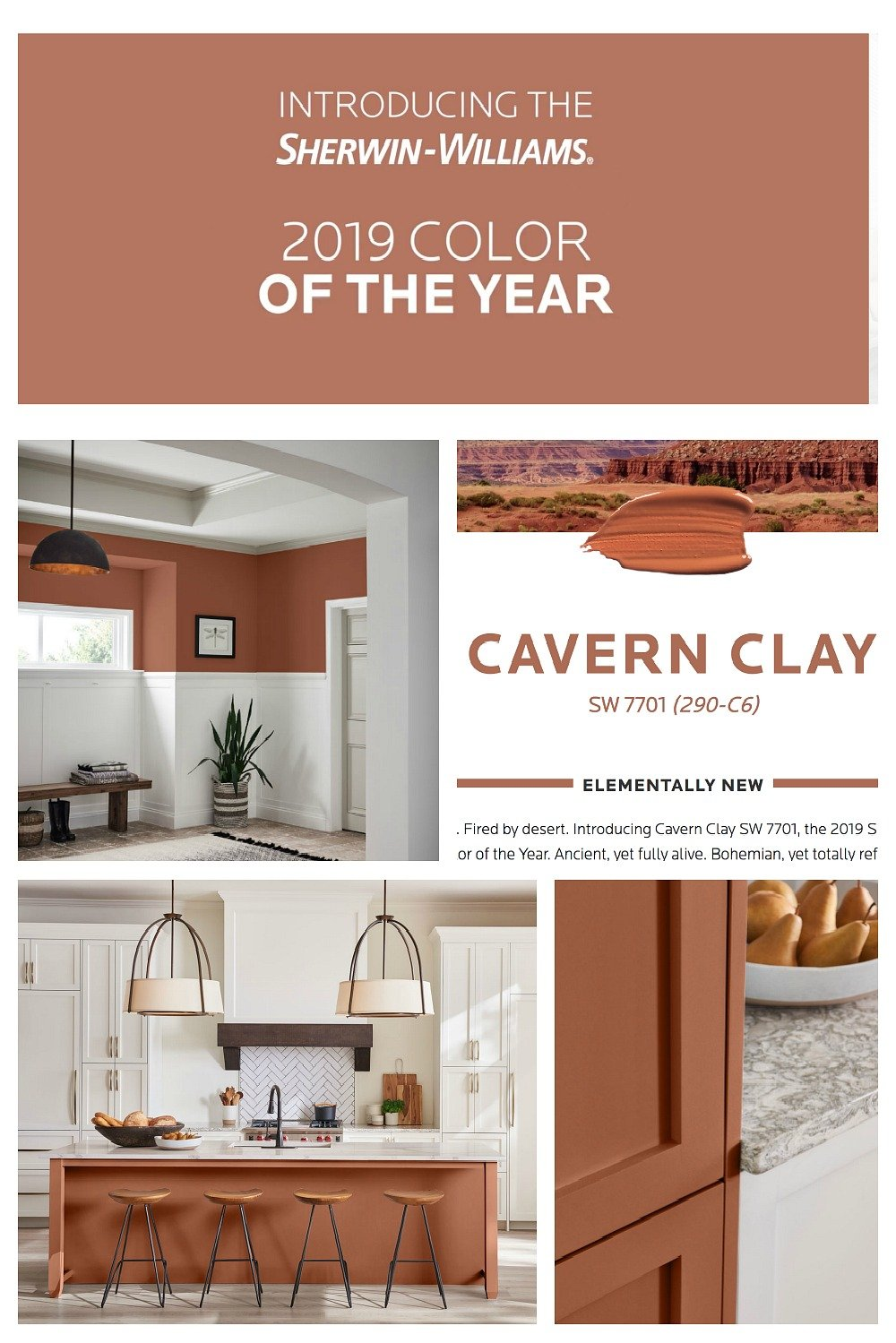 Sherwin Williams 2019 Color of the Year Cavern Clay