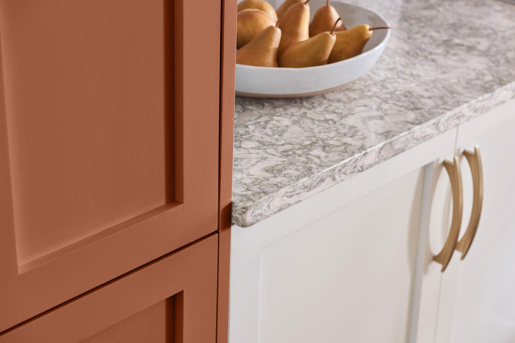 Doorcolor is Sherwin Williams Cavern Clay. 2019 Color of the Year