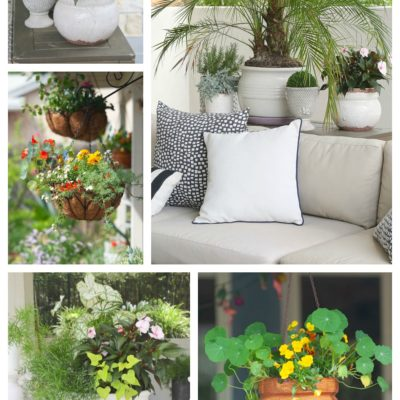 Creative Flower Pot and Planter Uses