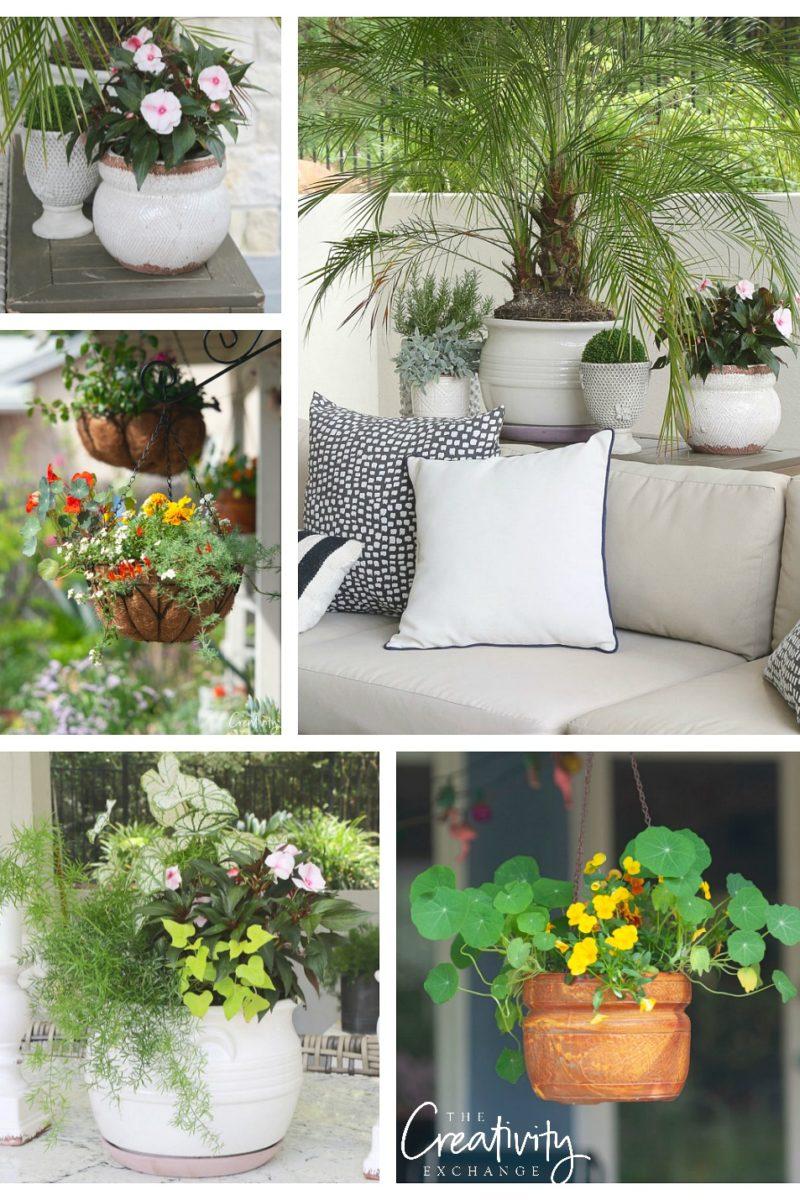 Creative garden pot ideas