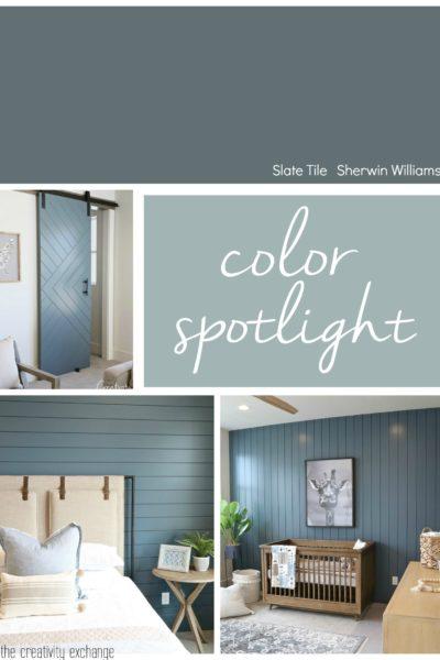 Color Spotlight Slate Tile
