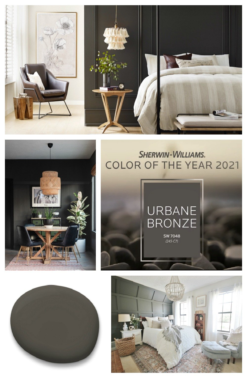 2021 Sherwin Williams 2021 Color of the Year Urbane Bronze