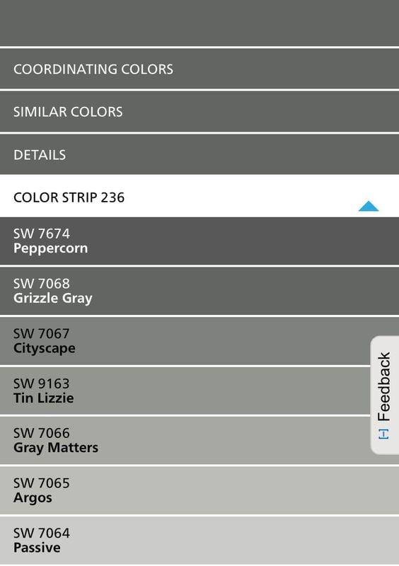 Sherwin Williams Color Strip 236