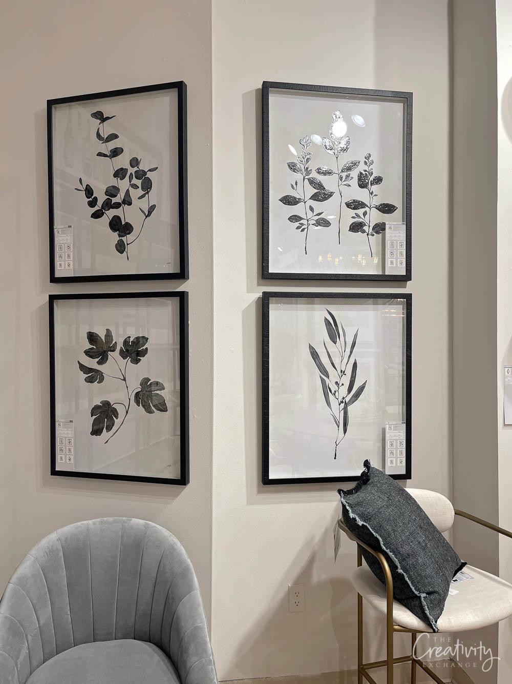 Black and white framed botanicals